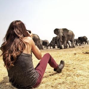 Shannon Elizabeth takes photos of elephants in Africa