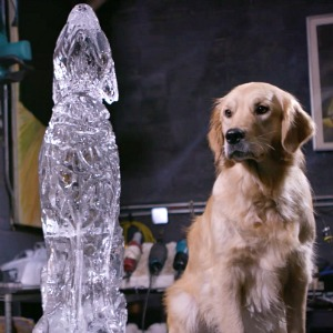 Dog ice sculpture
