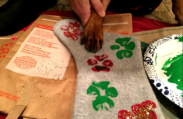 Dog printing paw prints on a stocking