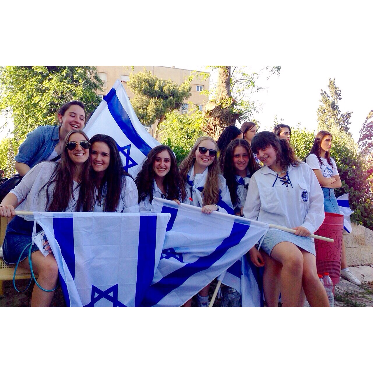 friends with Israeli flags