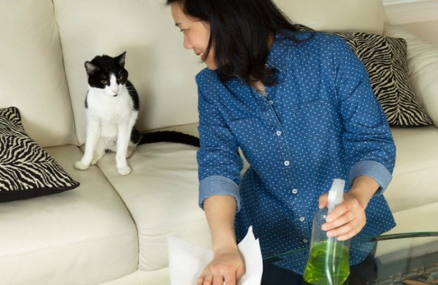 Woman safely cleaning near her cat.
