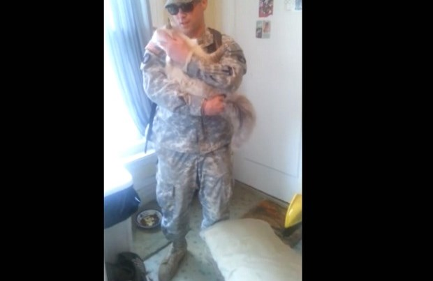 Cat greets soldier dad.