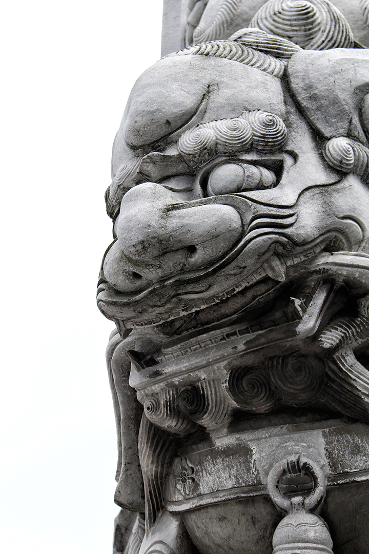 china08-lion.jpg