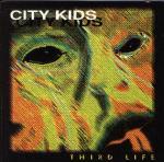 third life.jpg 7.625 K