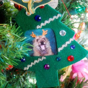 DIY dog ornament