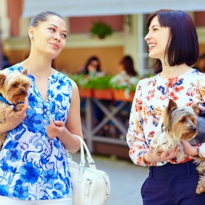 Woman giving dog advice to her friend