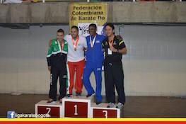 Imagen Bogotá Campeona