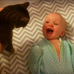Baby giggling at her favorite cat