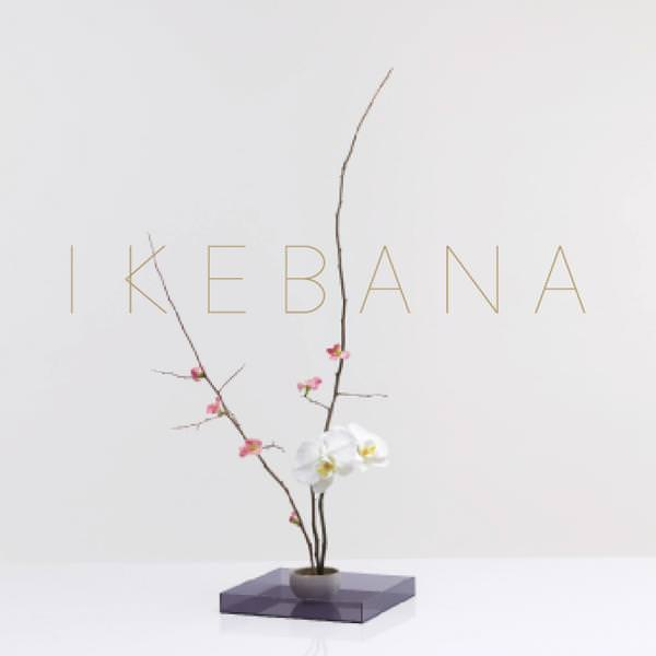 Project image for - Ikebana