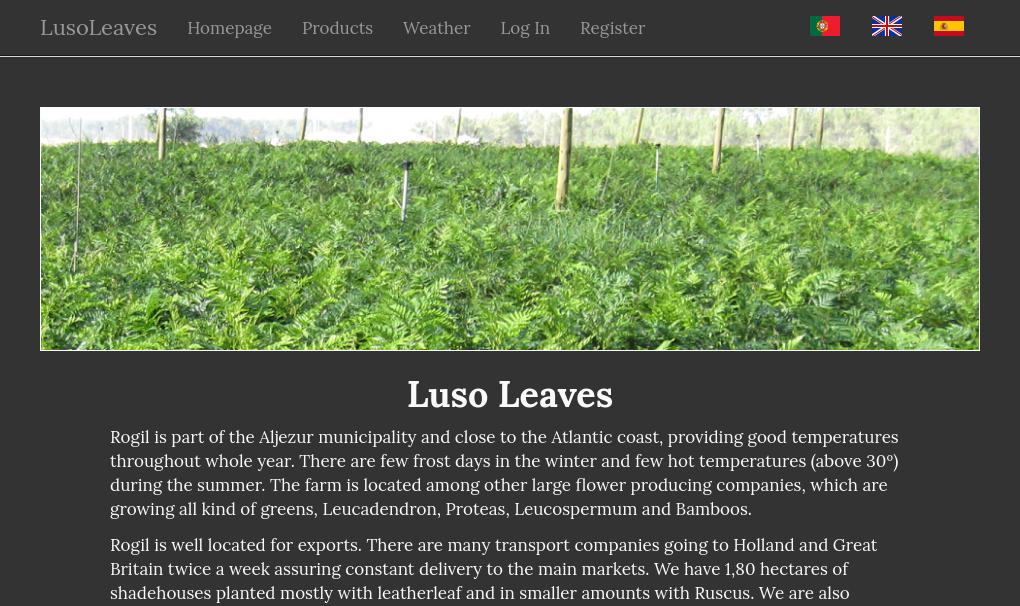 Lusoleaves - a business website.