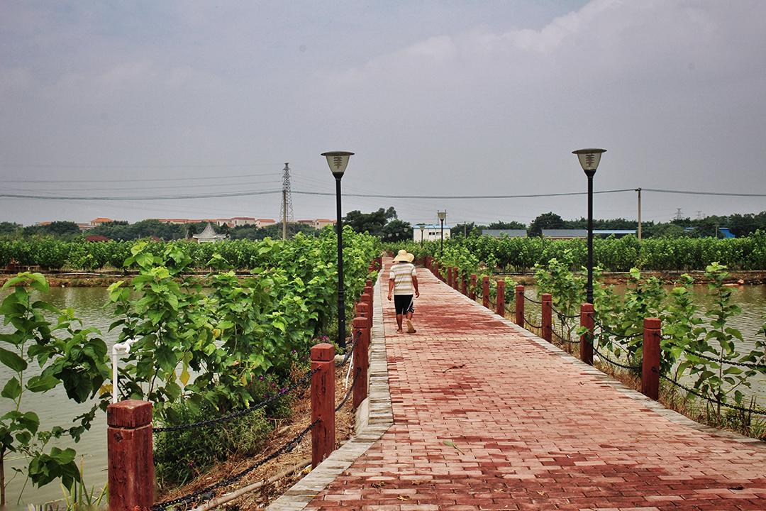 china02-red-brick.jpg