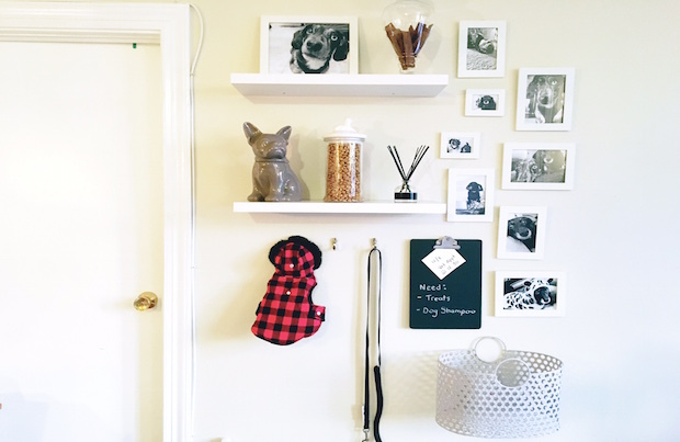 How to create a DIY pet accent wall, step 6