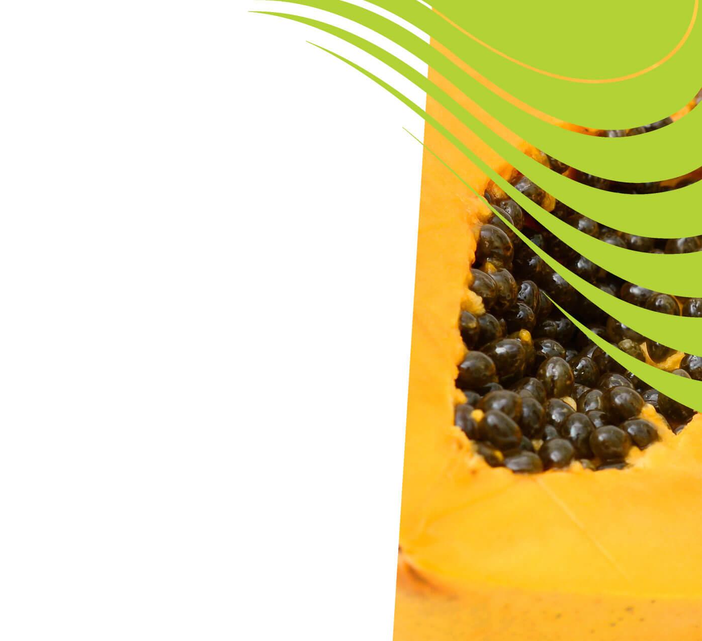 fertiliser for papaw