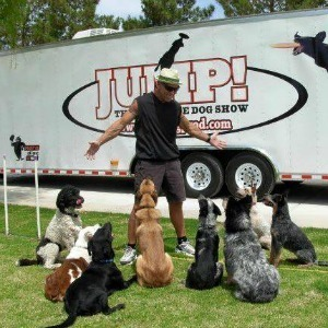 Shelter dogs in Lou Mack's show