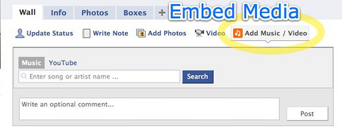 Facebook 2 | Profile Embed Media