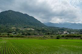 Fuli Township, Hualien County, Taiwan, 2018