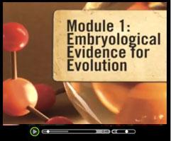 Evolution - Watch this short video clip