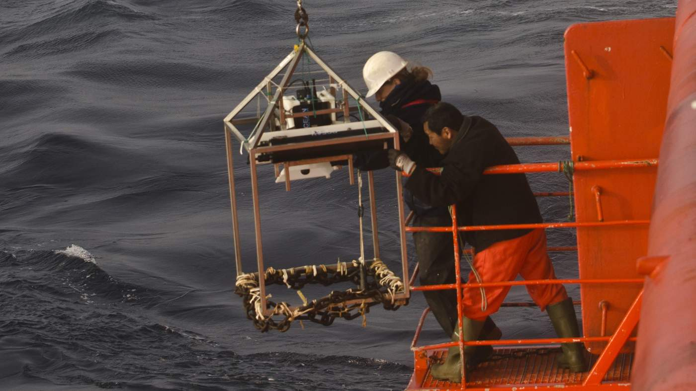 Scientists from ZSL lower the high resolution camera off the side of the research vessel. Image © ZSL