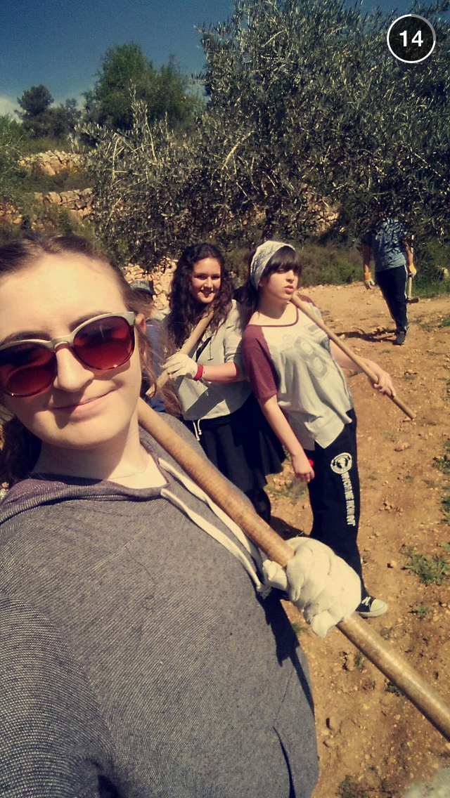 digging with friends