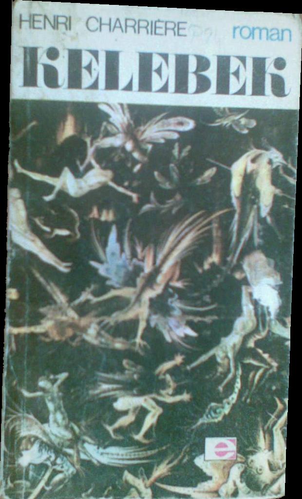 kelebek-kitap