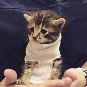 Pipes in her first sock sweater