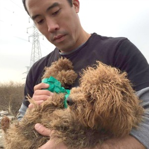 Marc Ching rescuing a dog