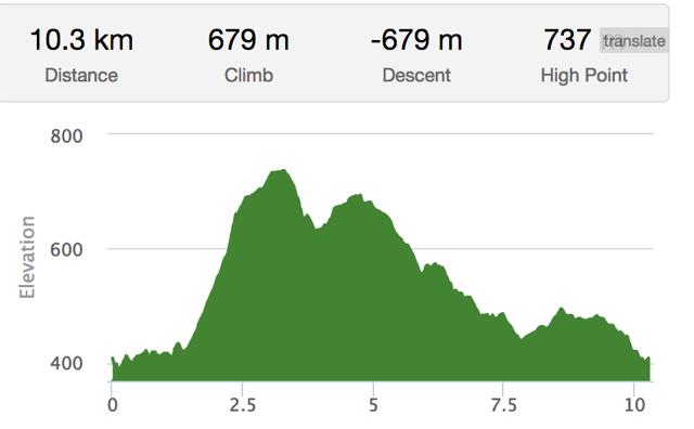10K Trail Run Elevation