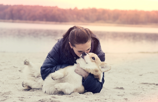 Can you love your dog too much?