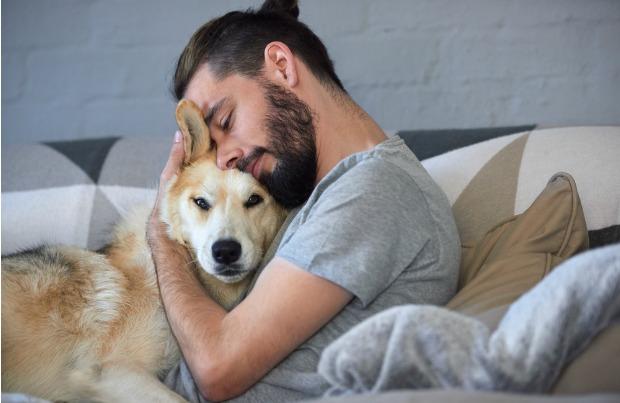 Should you hug your dog?