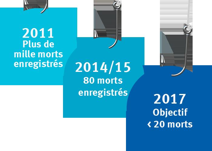 Rapport sur la mortalité des oiseaux causée par les pêcheries de légine des îles de Kerguelen, avant et après certification MSC