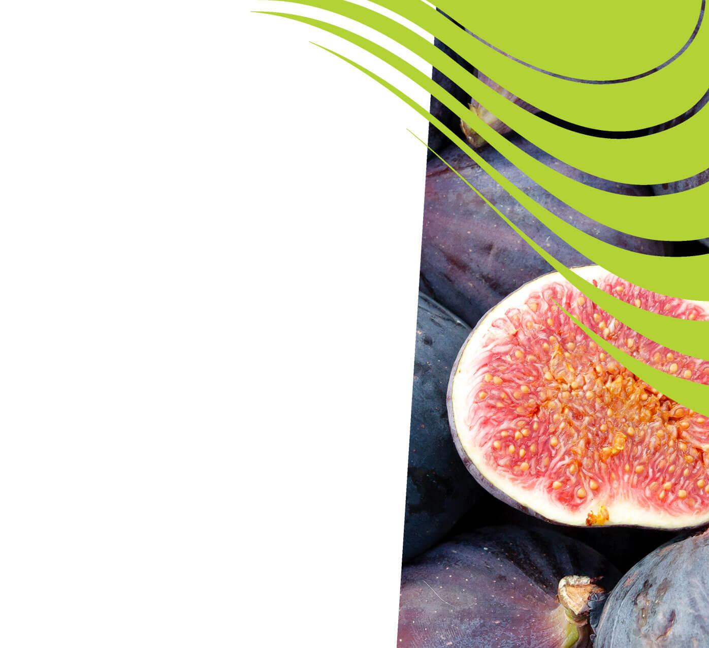 fertiliser for figs