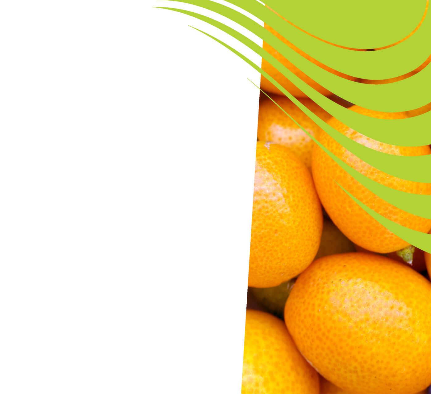 fertiliser for kumquats