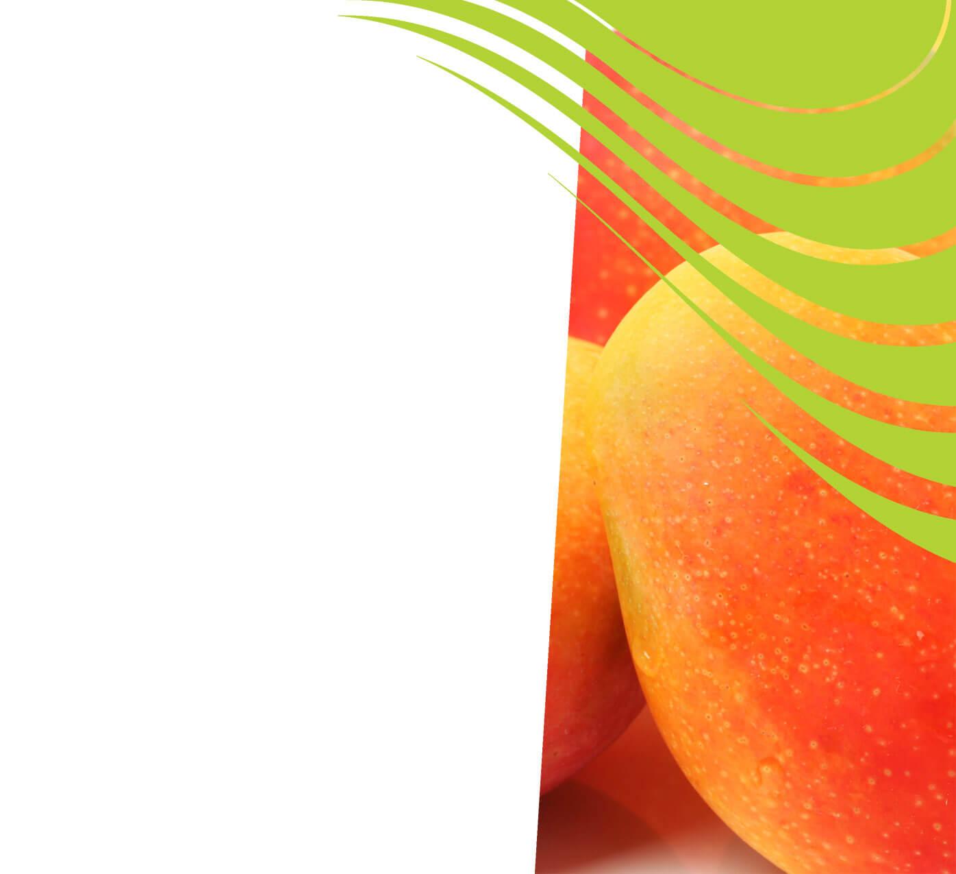 fertiliser for mangoes
