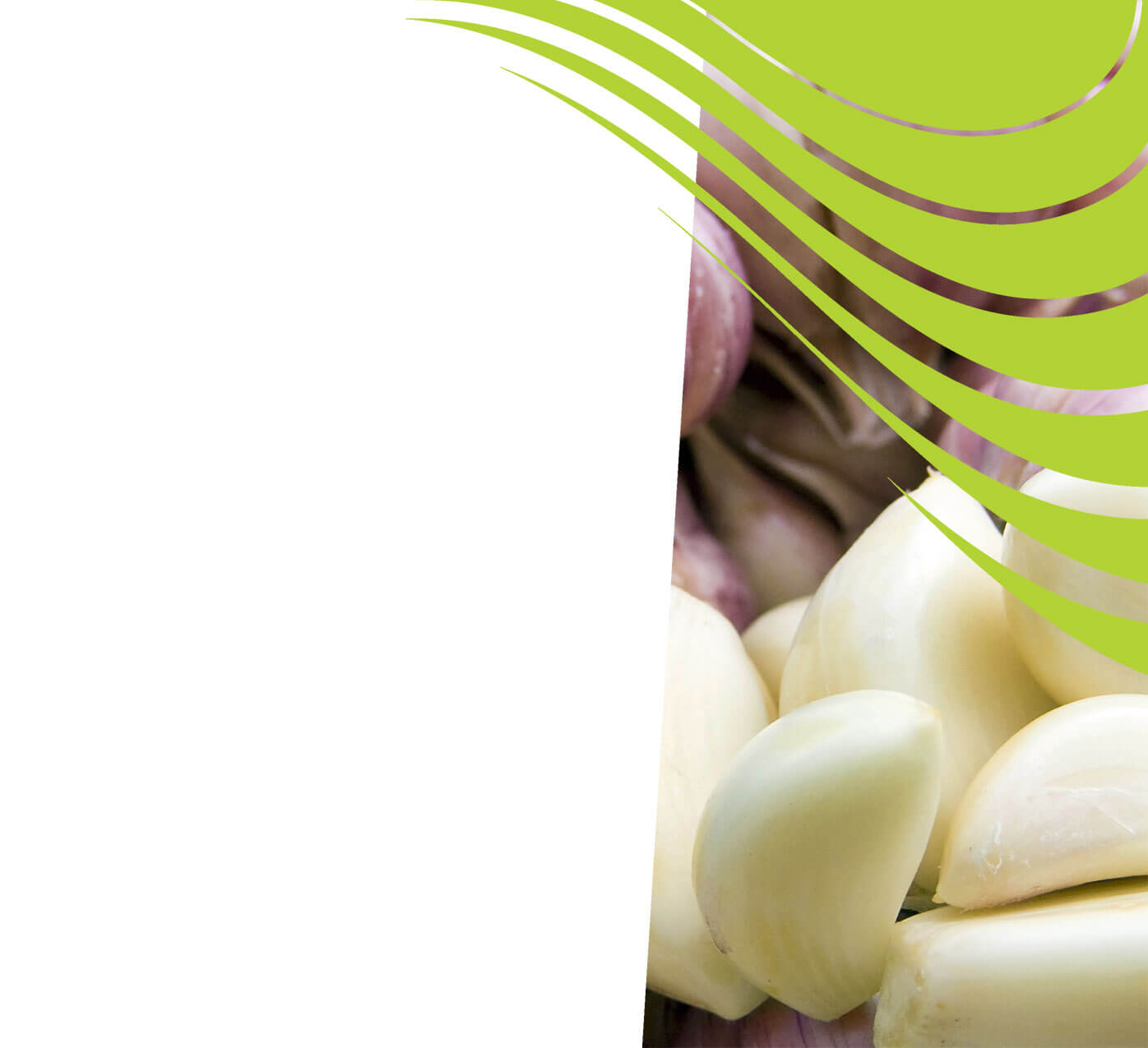 fertiliser for garlic