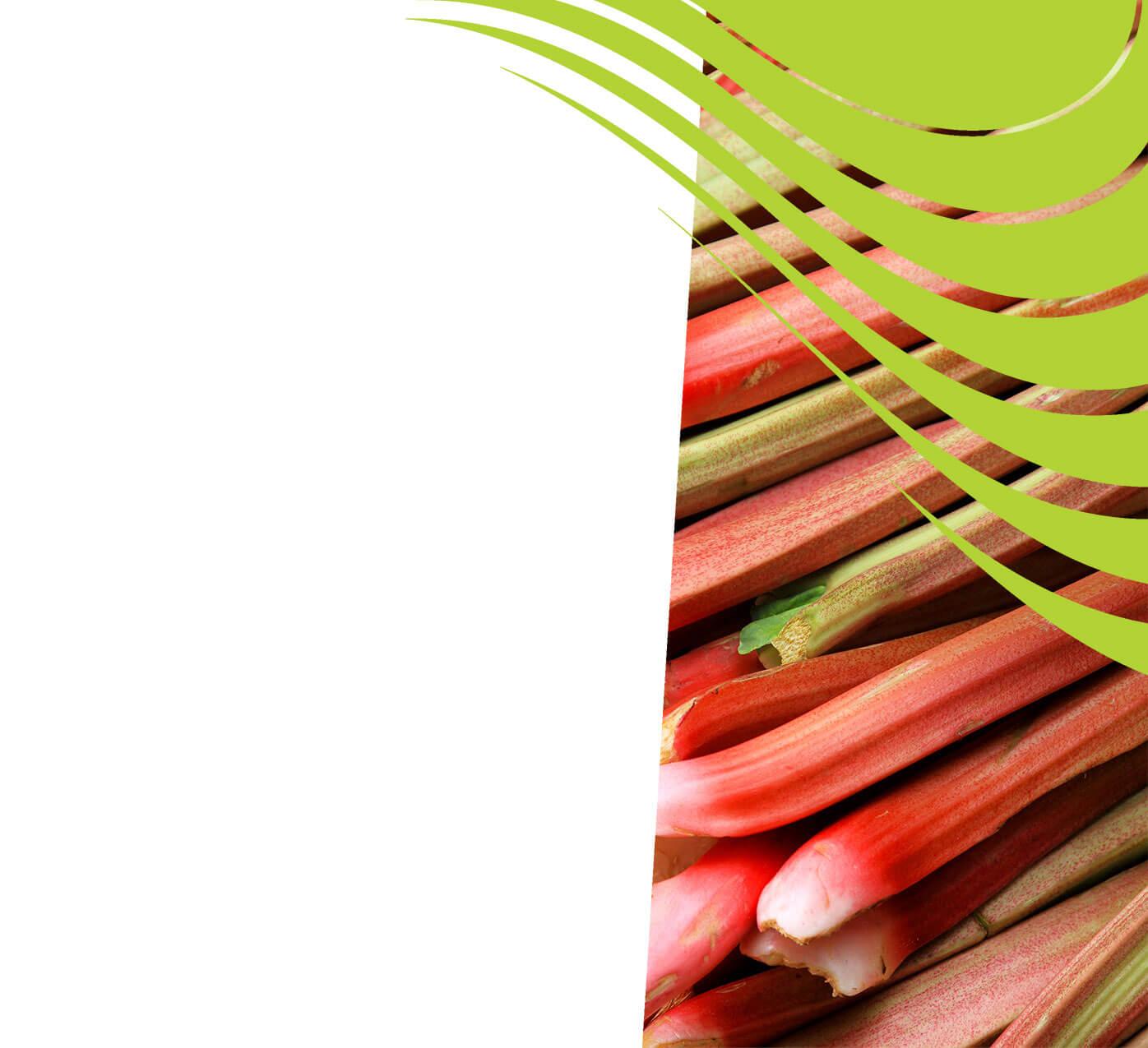fertiliser for rhubarb