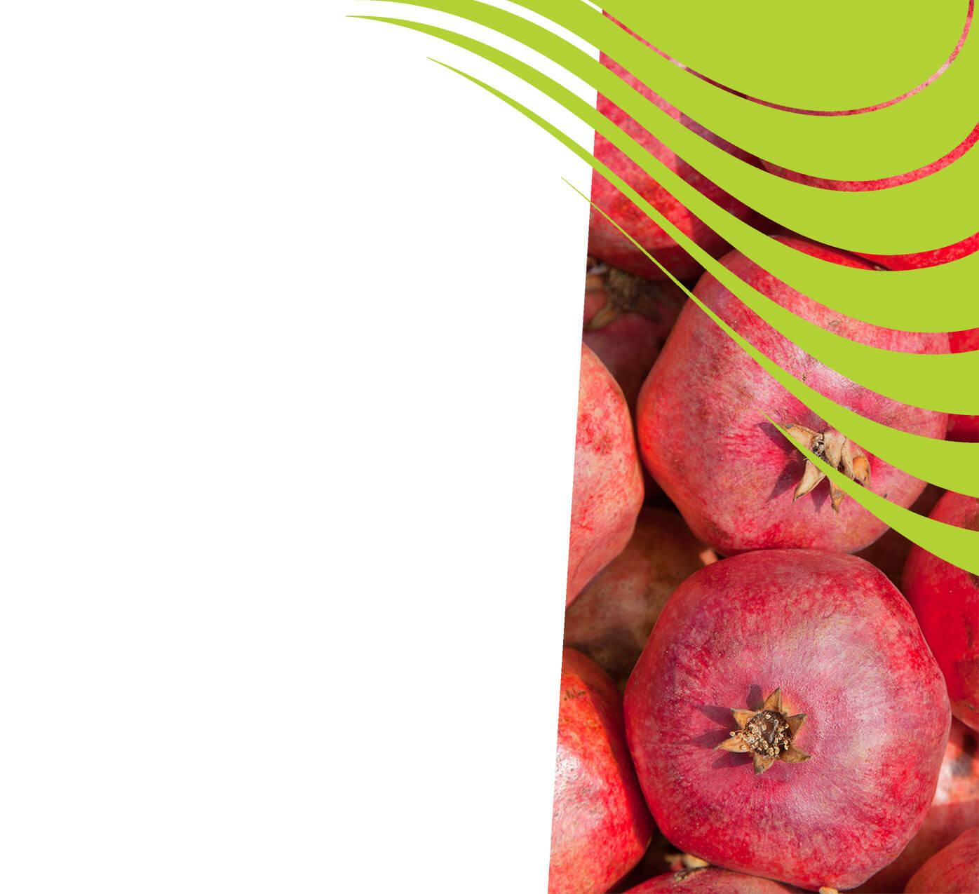 fertiliser for pomegranates
