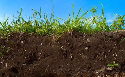soil and crop health monitoring