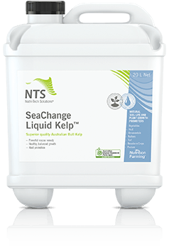 seachange liquid kelp