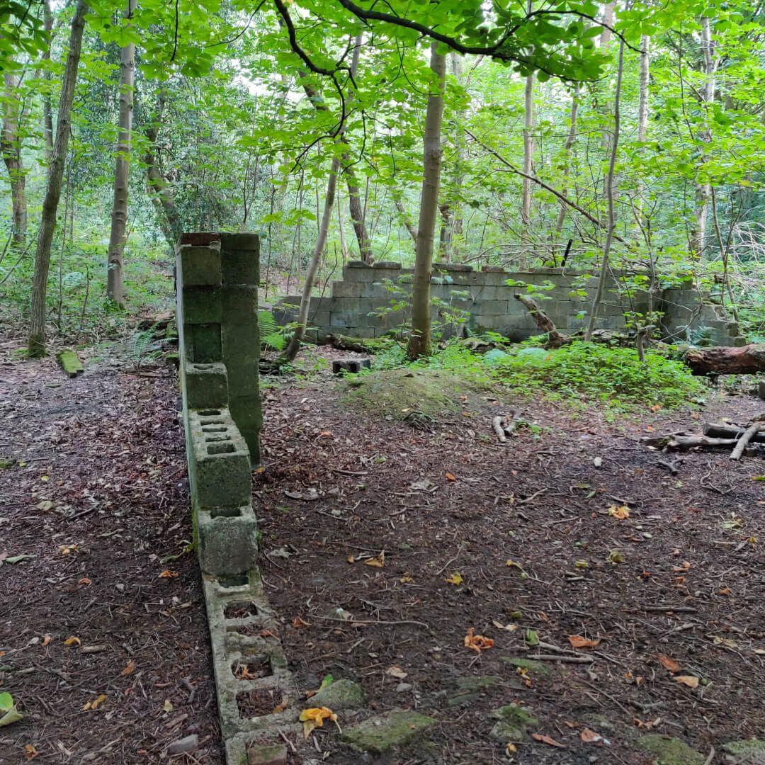Calverley Wood ruins