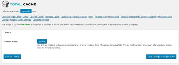 W3 Total Cache settings panel screenshot.