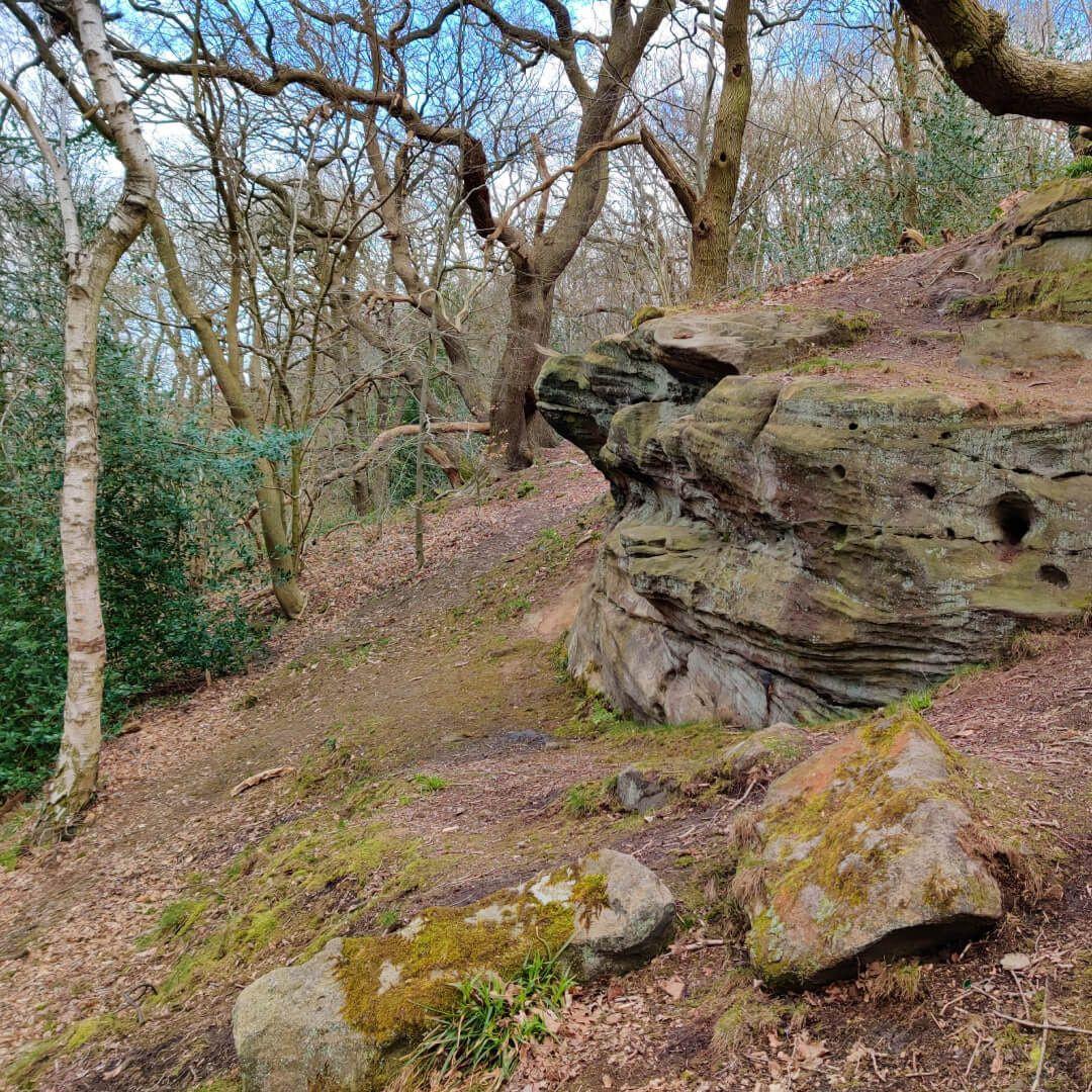 Rock overhang at Hetchell Wood Leeds