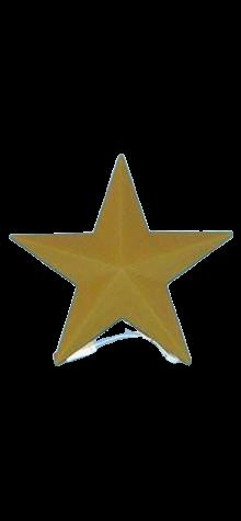 Gold Star photo
