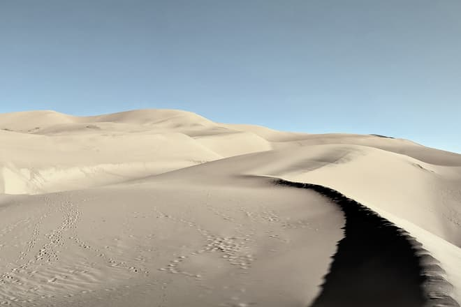 A field of rolling sand dunes.