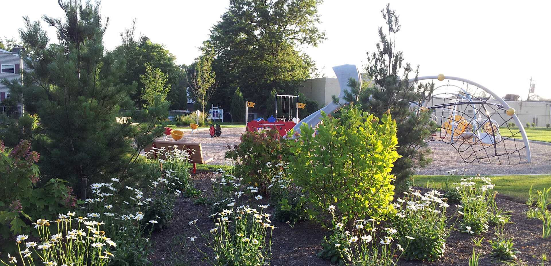 landscaping surrounding the playground area