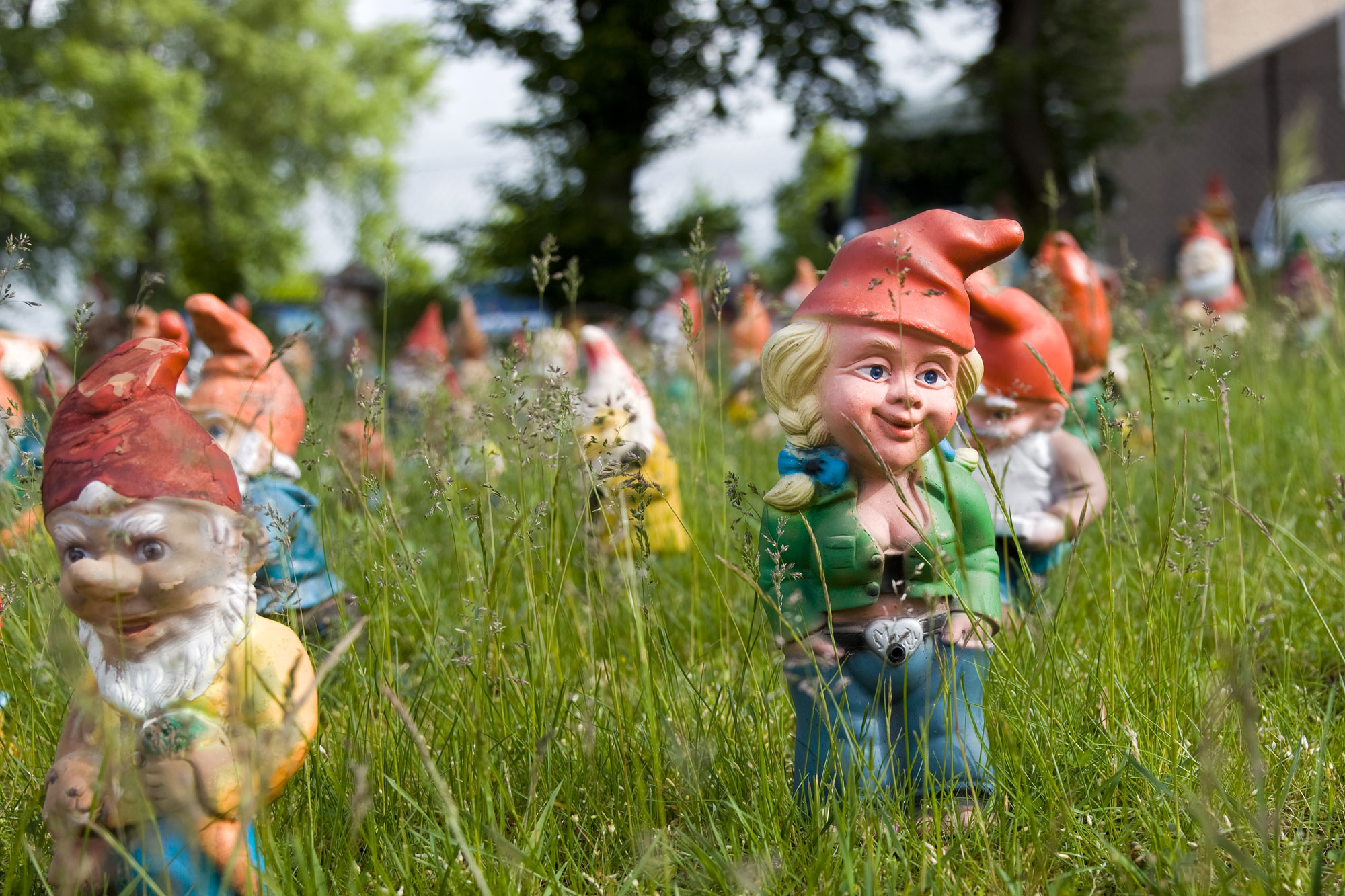 Lots of gnomes, somewhere in Wisconsin