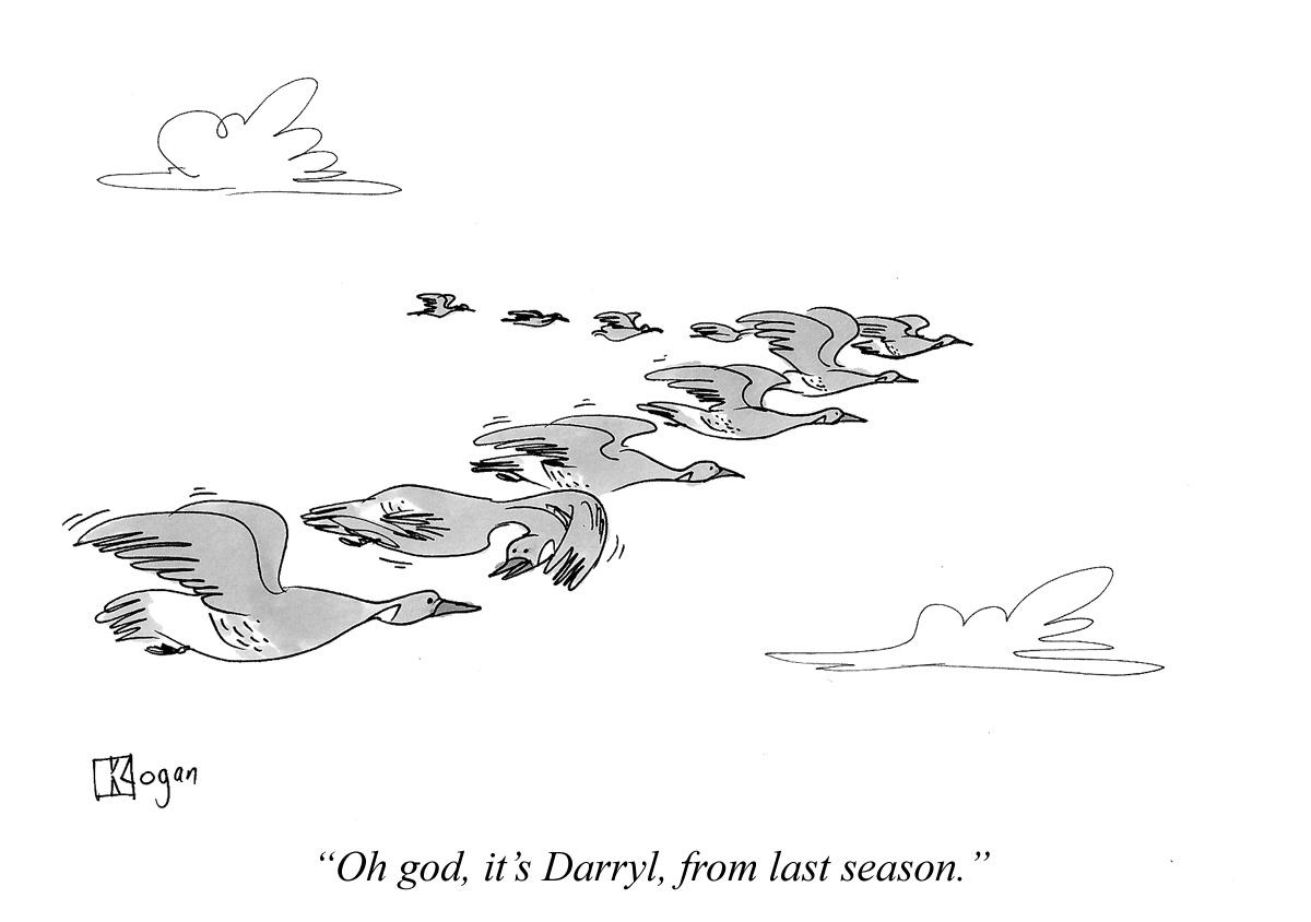 Oh god, it's Darryl, from last season.