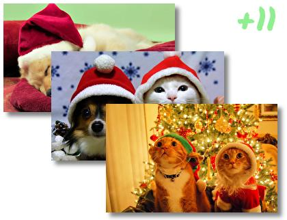 Christmas Cute Animals theme pack