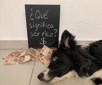 Ninca acostada al lado de muchos billetes de $500 pesos mexicanos y de un cartel que dice: '¿Qué significa ser rico? $'.