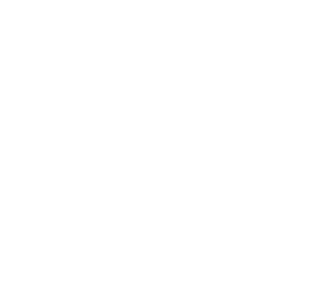 From Core to Sun