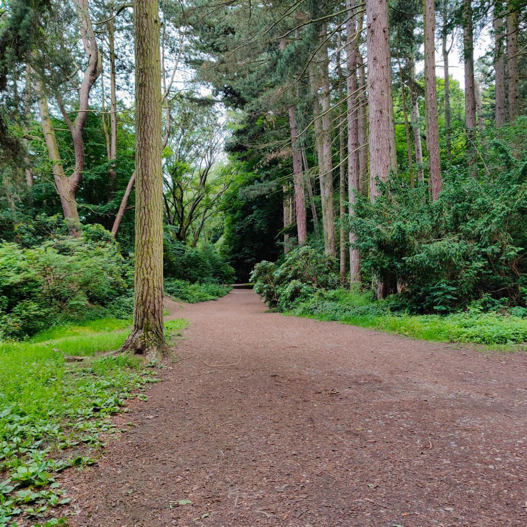 The Hollies Leeds main path